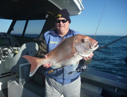 SSP™ Fibre Glide Tested by Sam Mossman (NZ Fishing News)