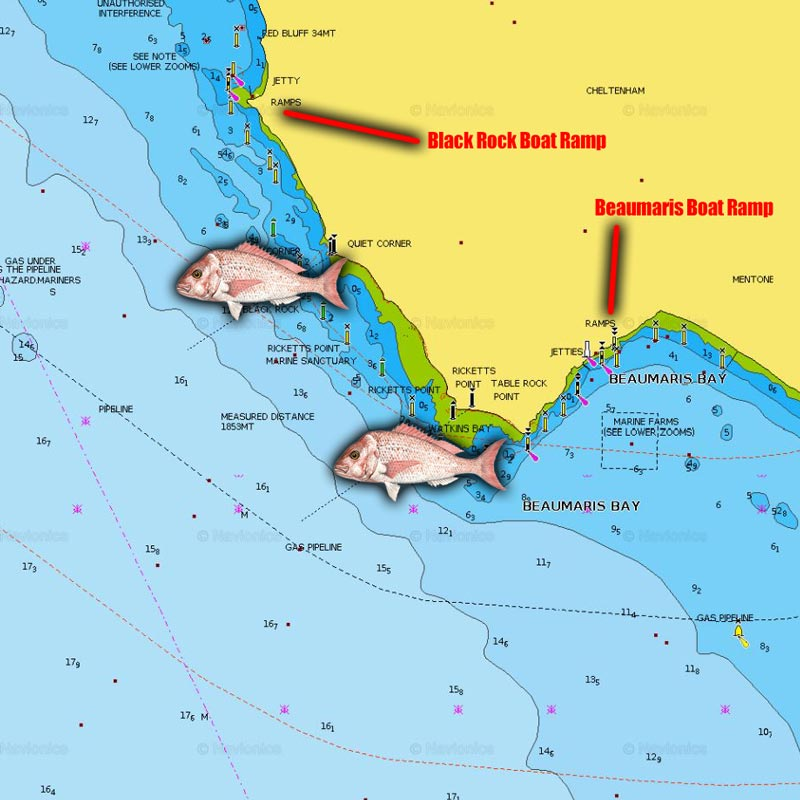 snapper fishing spots map chart melbourne victoria black rocks rickett point