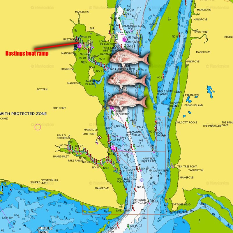 snapper fishing spots map chart melbourne victoria hastings channel