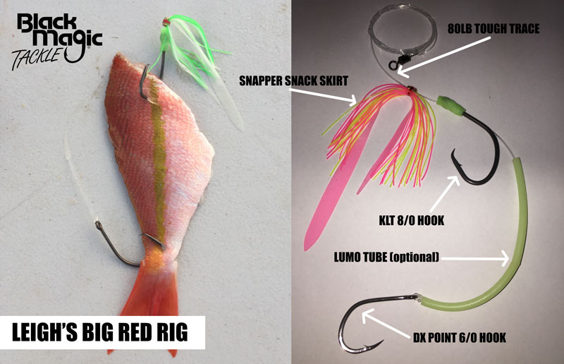 best rig for red emperoro fishing rig diagram