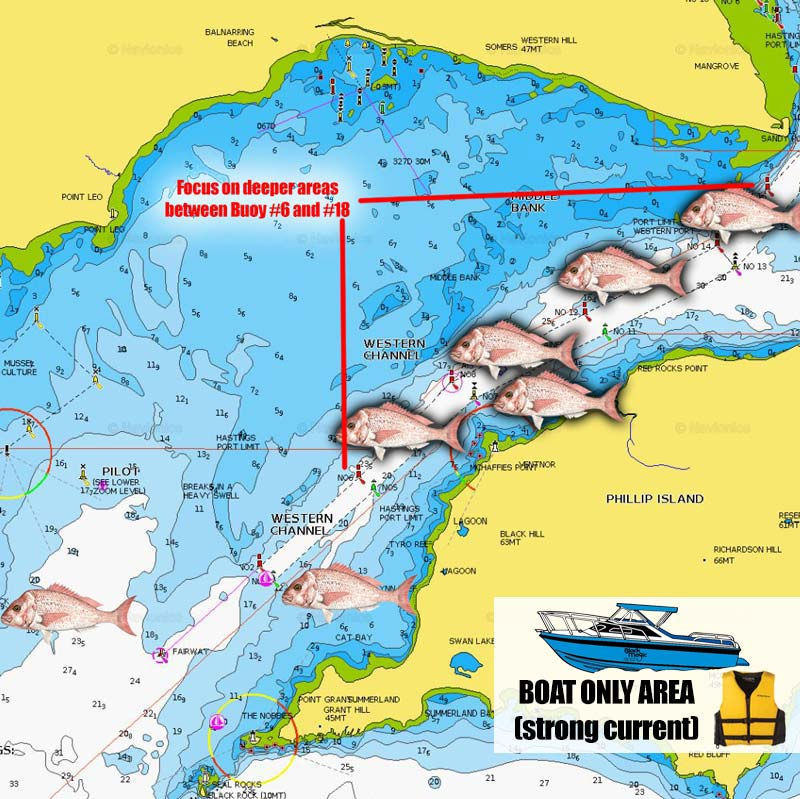 snapper fishing spots map chart melbourne victoria western entrance