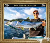 nz kingfish on ocean born flying pencill lure hauraki gulf
