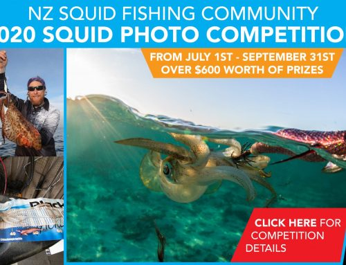 NZ Squid Fishing Community – 2020 Squid Photo Competition