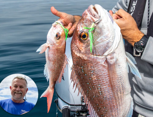 Targeting the bigger fish, Snapper especially