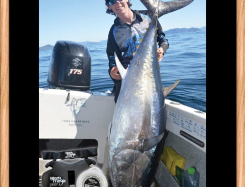 80kg Southern Tuna taken again by the proven Flaming Squid Flea