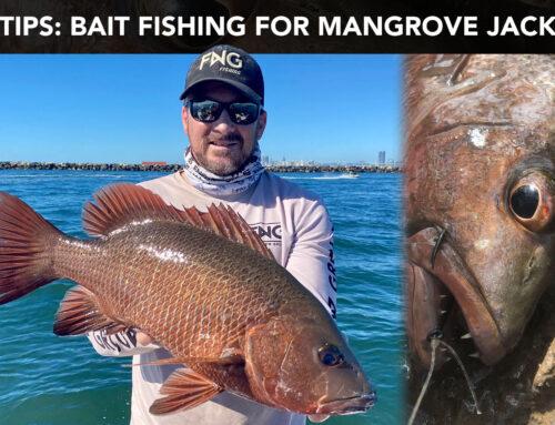 Bait fishing for Mangrove Jack